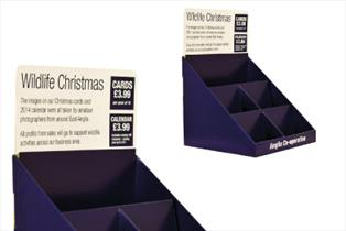 CELL Display - Holker - Bladen Box & Display